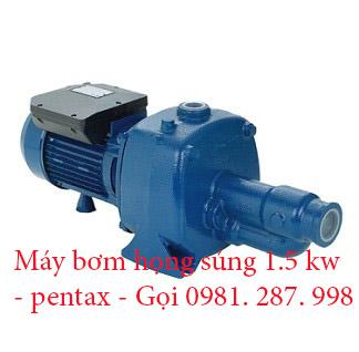 máy bơm nước Pentax 1.5 kw