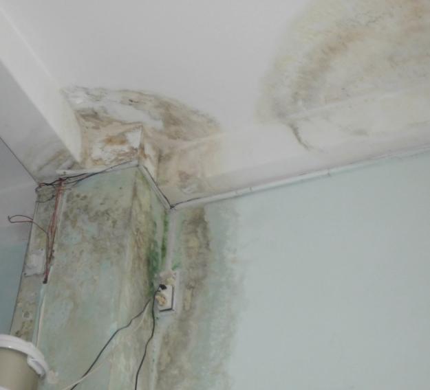 Thợ sửa chữa ống nước bục vỡ rò rỉ trong tường tại Hà Nội